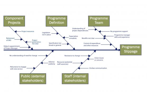 A cause and effect diagram compares potential impacts on the successful delivery of a programme or project.