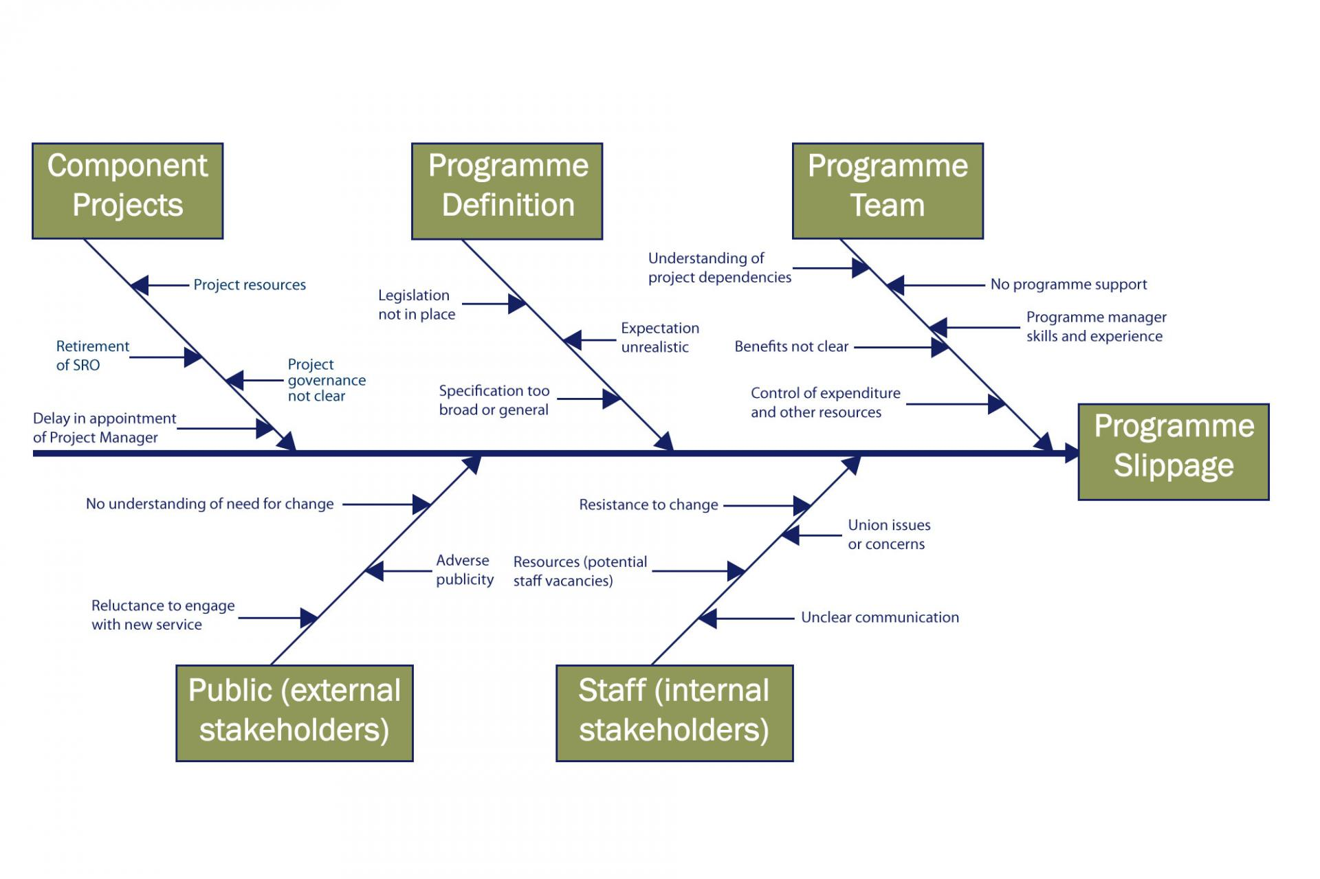 Programme and project management tools and techniques department cause and effect diagram ccuart Choice Image