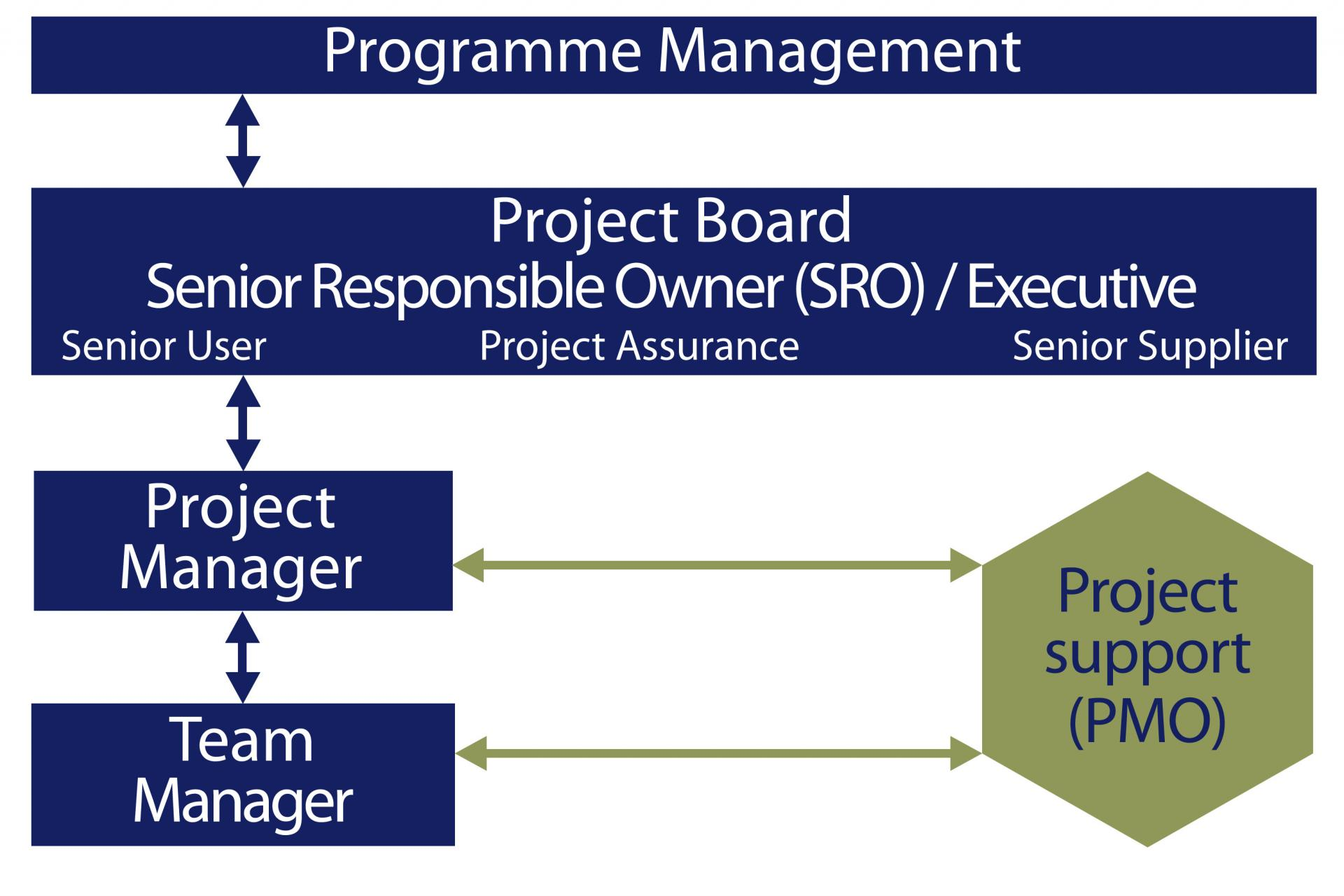 Role Of The Programme And Project Management Offices Department Of